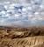 Израиль в пустыне (Гарри Виттакер)